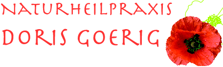 Heilpraktiker Nürnberg Naturheilpraxis Goerig